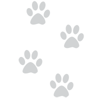 EL4YU-pootjes-web